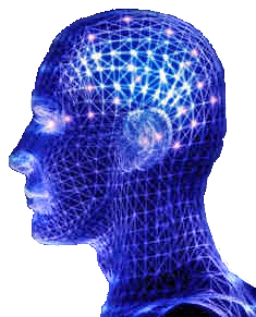 20070807_blue-brain
