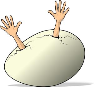 Egg_004