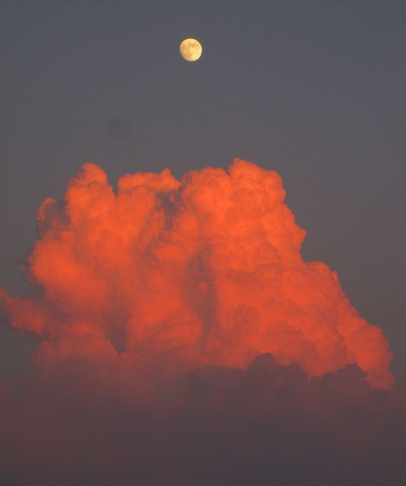 Moonrise with salmon cloud