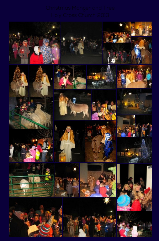 Christmas Manger and Tree Lighting