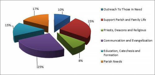 Distribution Pie Chart-2